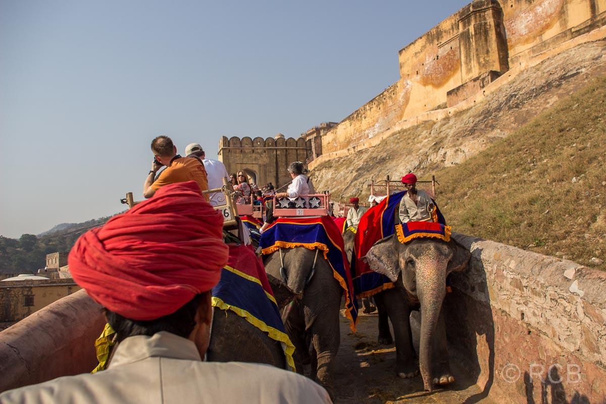 Elefantenritt zum Amber Fort