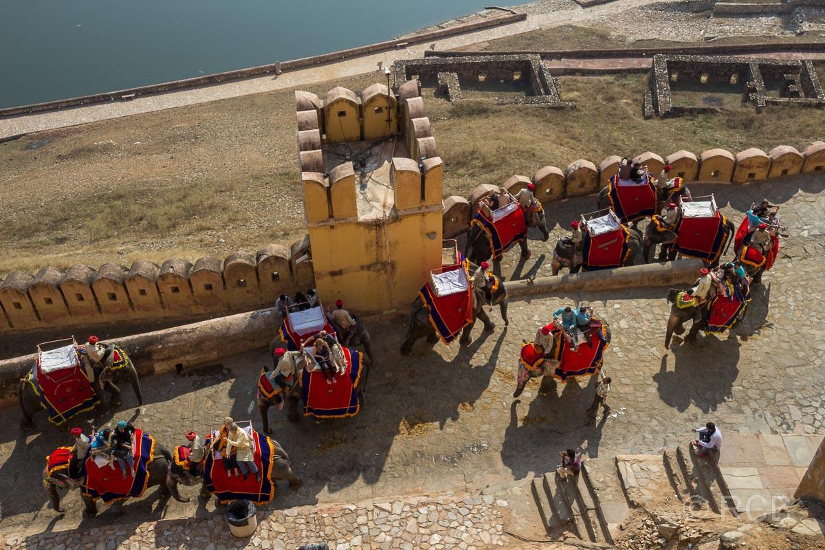 Amber Fort, Elefanten kommen die Rampe zum Tor hinauf