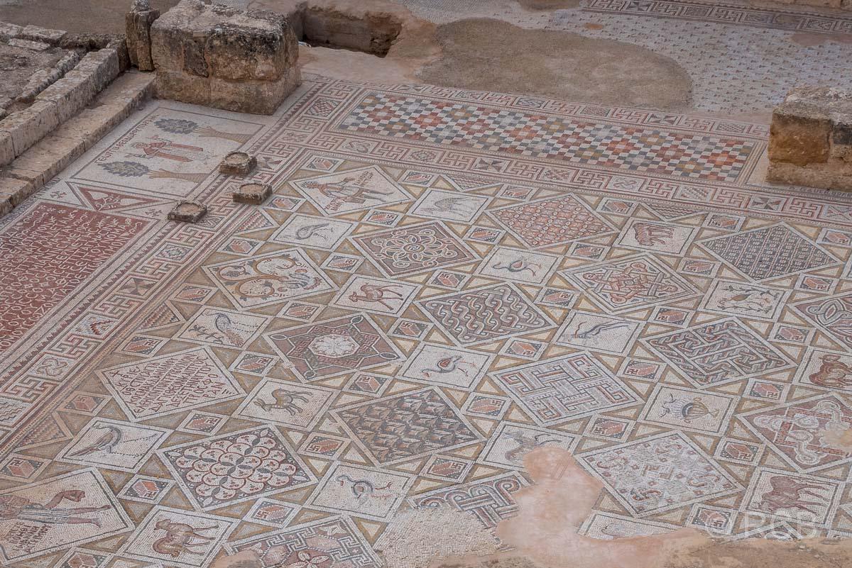 Jerash, Mosaiken in der St. Cosmas-und-Damian-Kirche