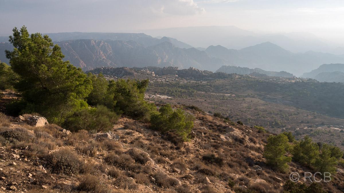 Blick über das Dana Naturreservat