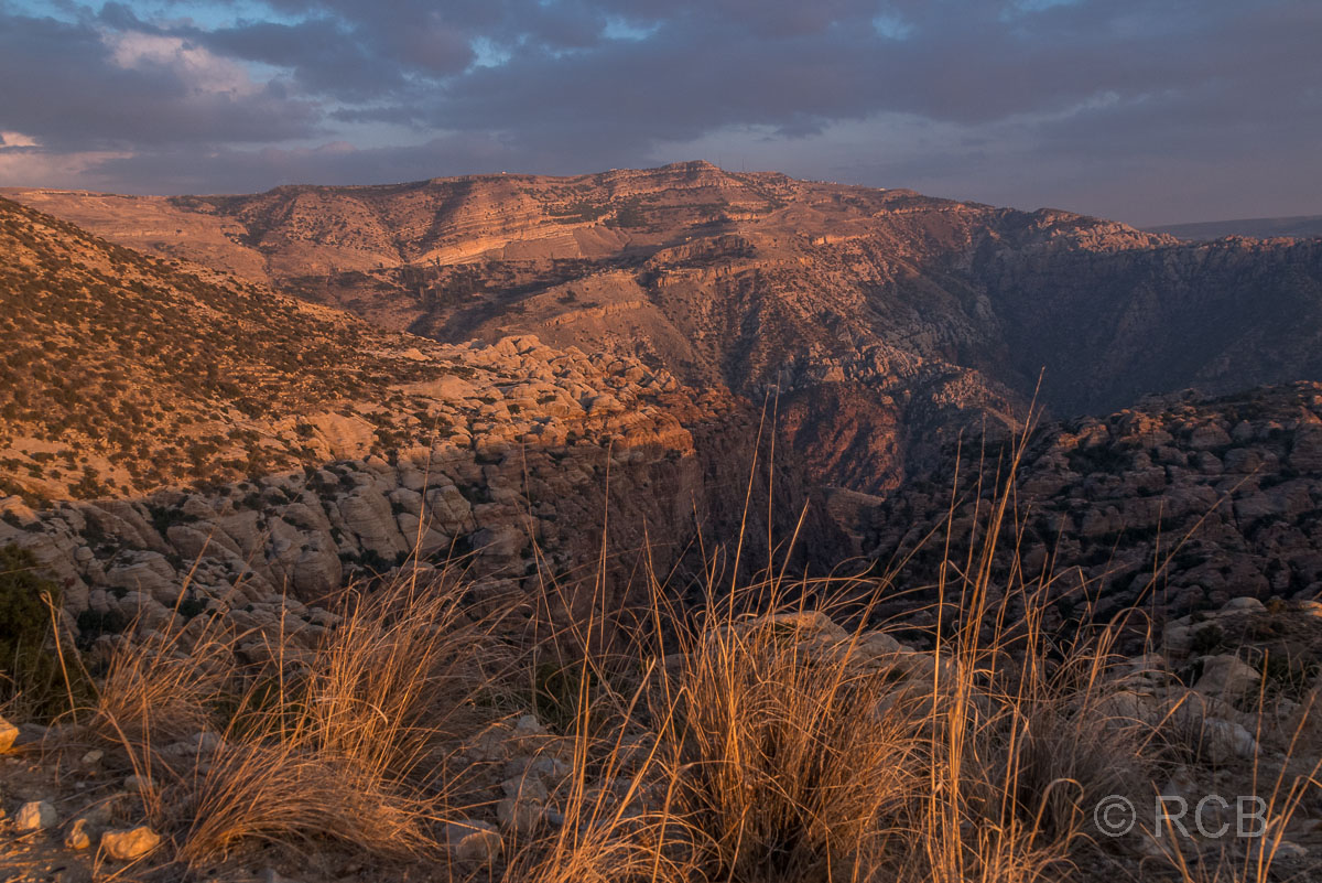 goldenes Abendlicht im Dana Naturreservat mit Blick über die Schluchten