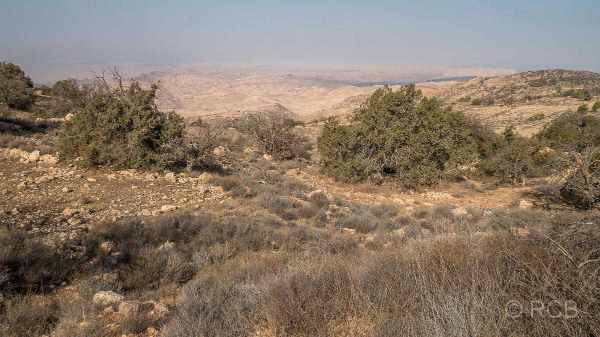 Rummana Mountain Trail, Blick ins Wadi Araba, Dana Naturreservat