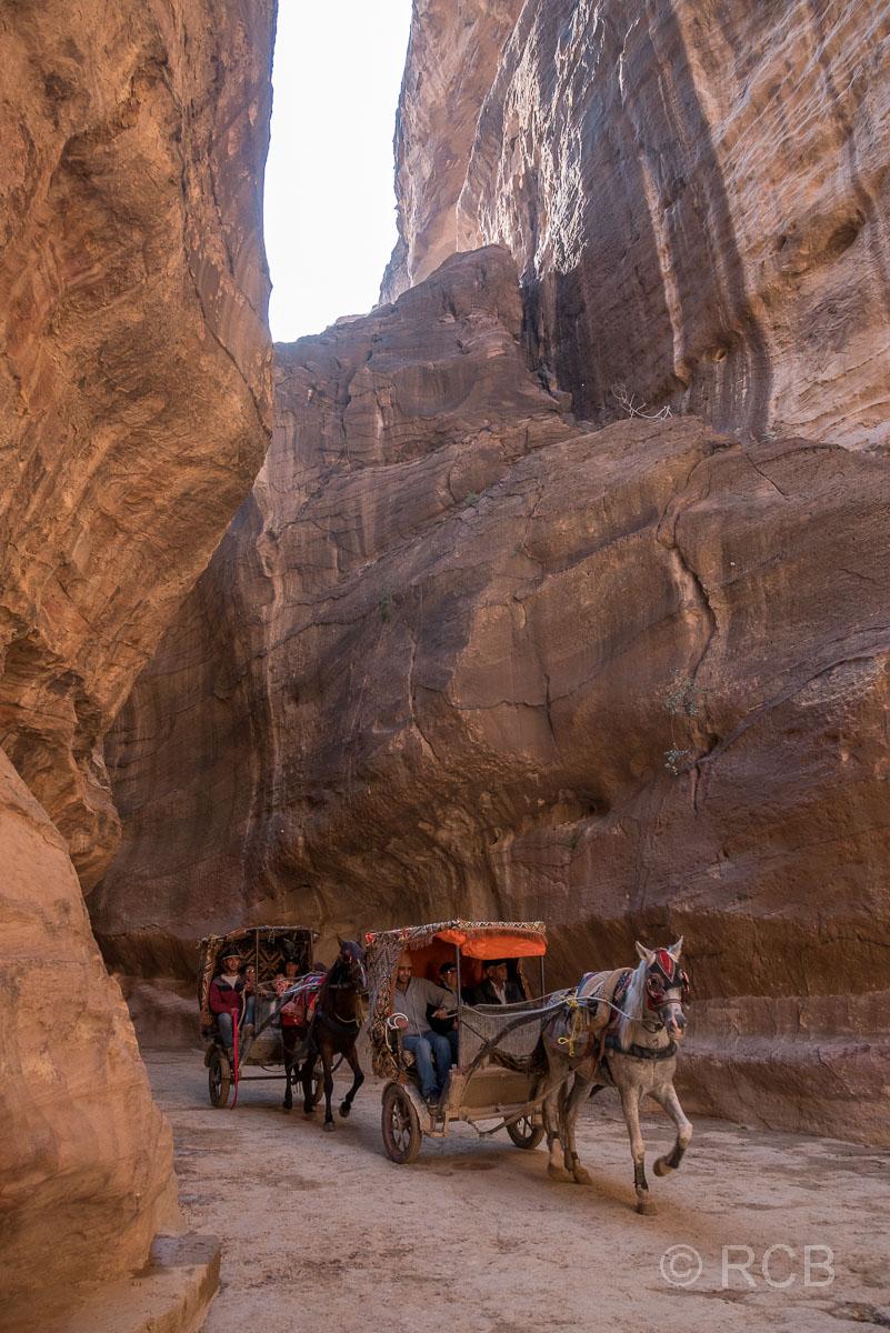Kutsche fährt durch den Siq, Petra