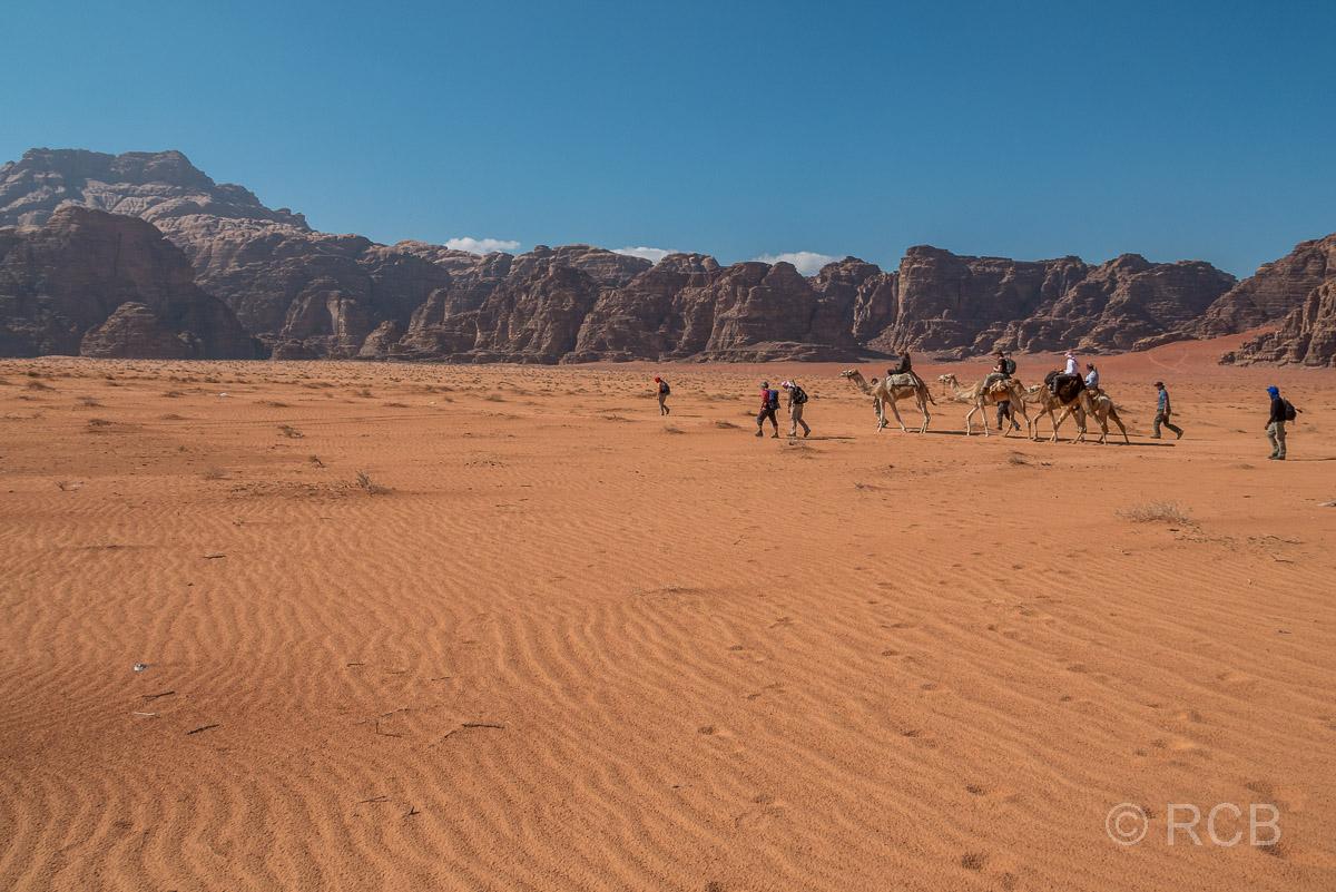 Wandergruppe und 3 Reiter auf Kamelen ziehen durch die Wüste des Wadi Rum