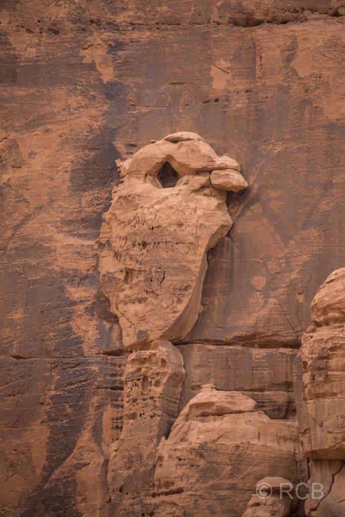 Felsen in Form eines kleinen Vogels im Wadi Rum