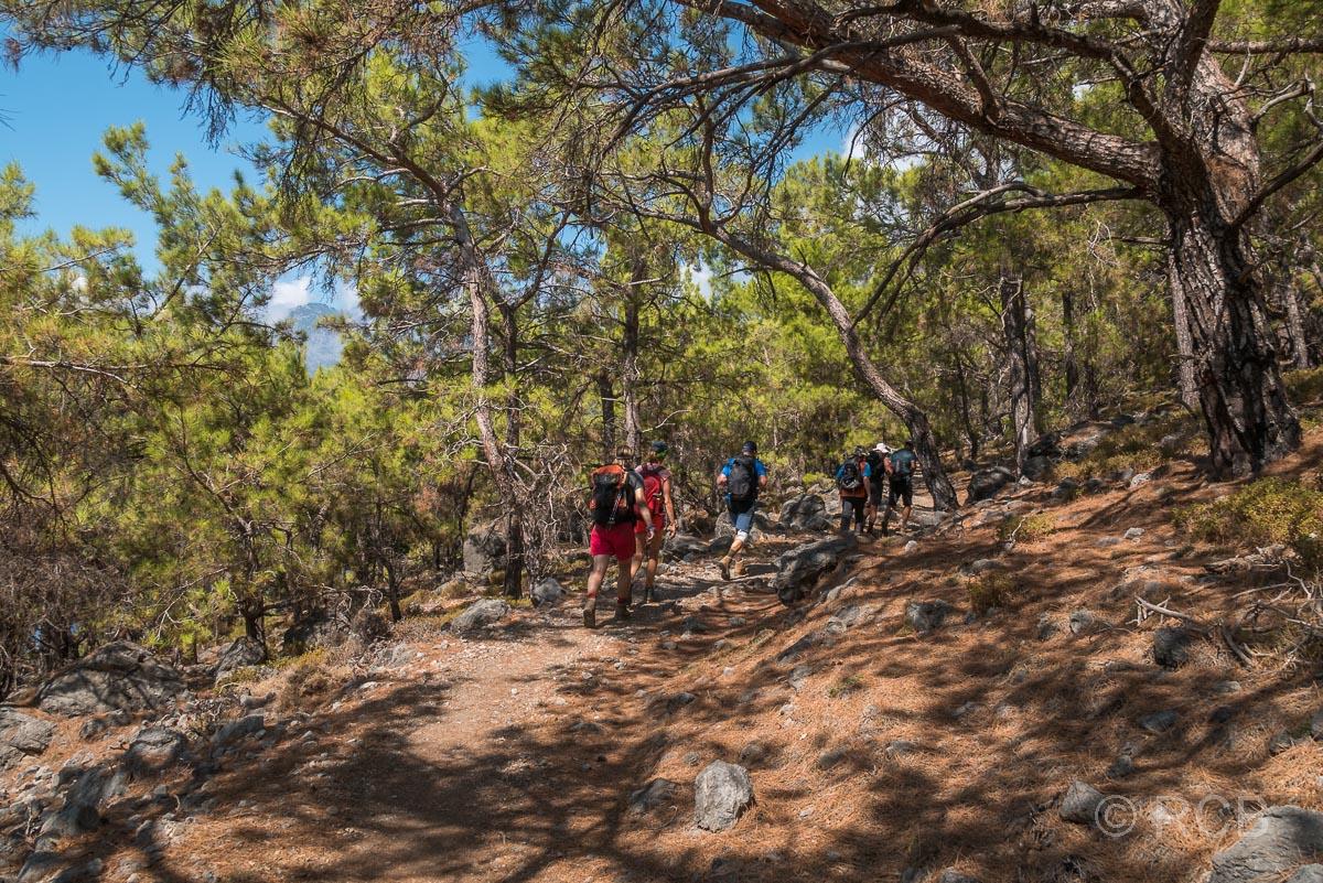 Wanderer in einem Kiefernwald oberhalb des Agios Pavlos-Strandes