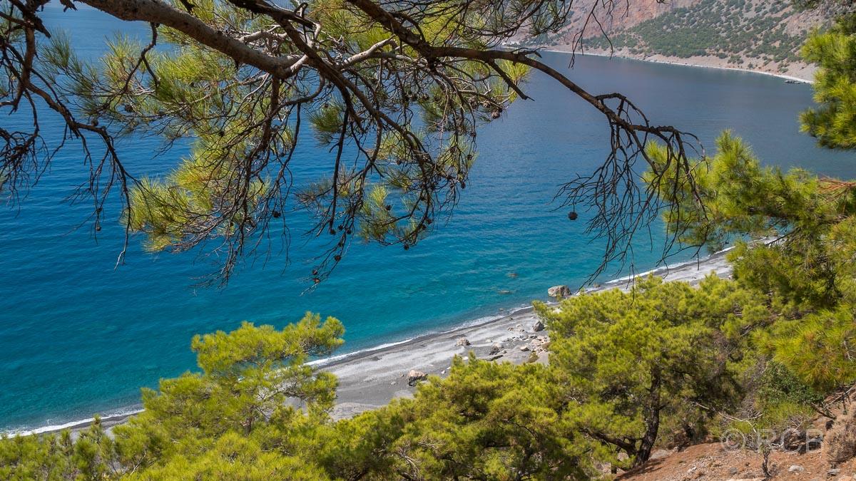 Blick durch Kiefernäste hindurch auf den Agios Pavlos-Strand