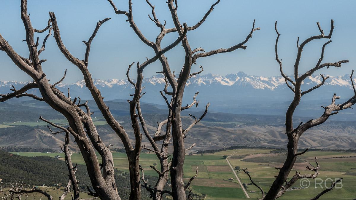 Blick Richtung schneebedeckter Berge vom Warner Trail aus