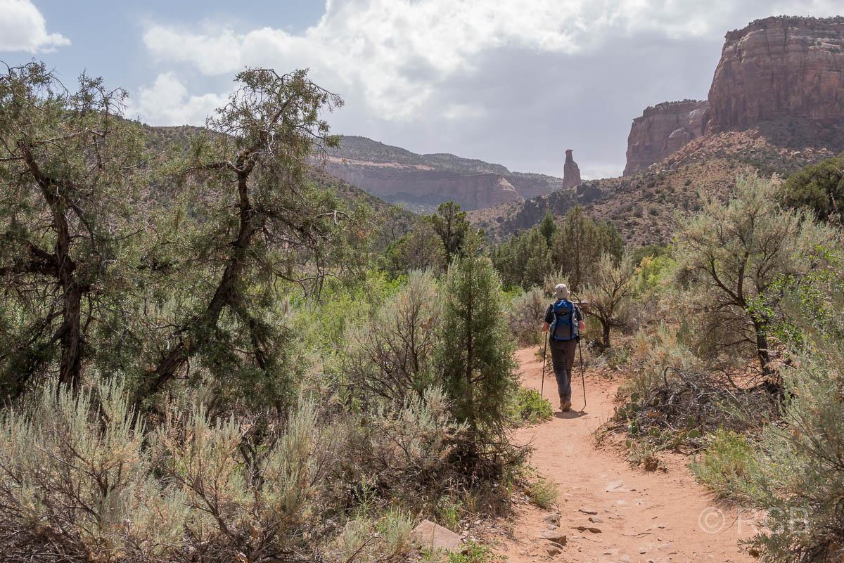 Mann wandert im Monument Canyon