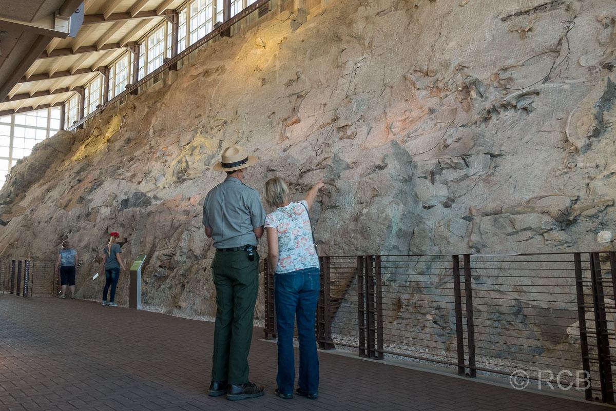 Dinosaur Quarry Exhibit Hall