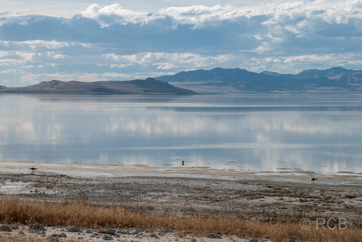 auf dem Damm nach Antelope Island