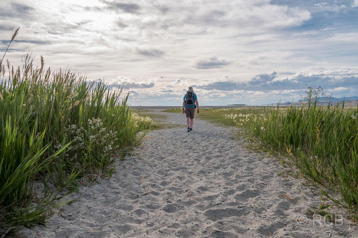 Mann geht auf den Strand der Bridger Bay, Antelope Island
