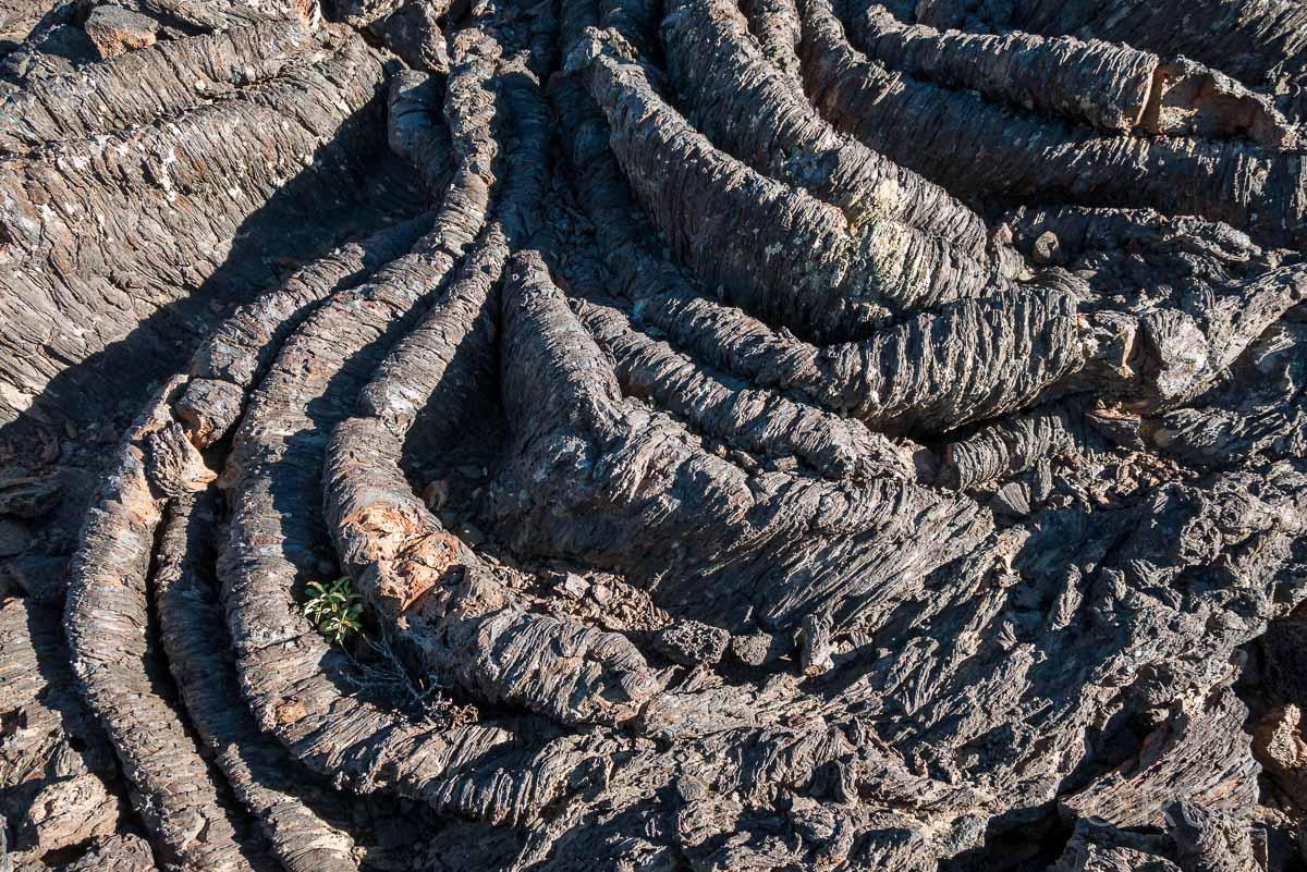 erstarrte Lava, Broken Top Loop, Craters of the Moon NM