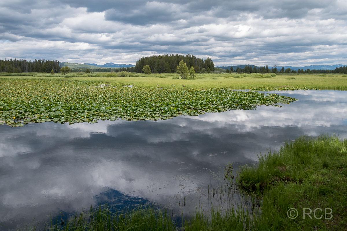 Swan Lake, Grand Teton NP