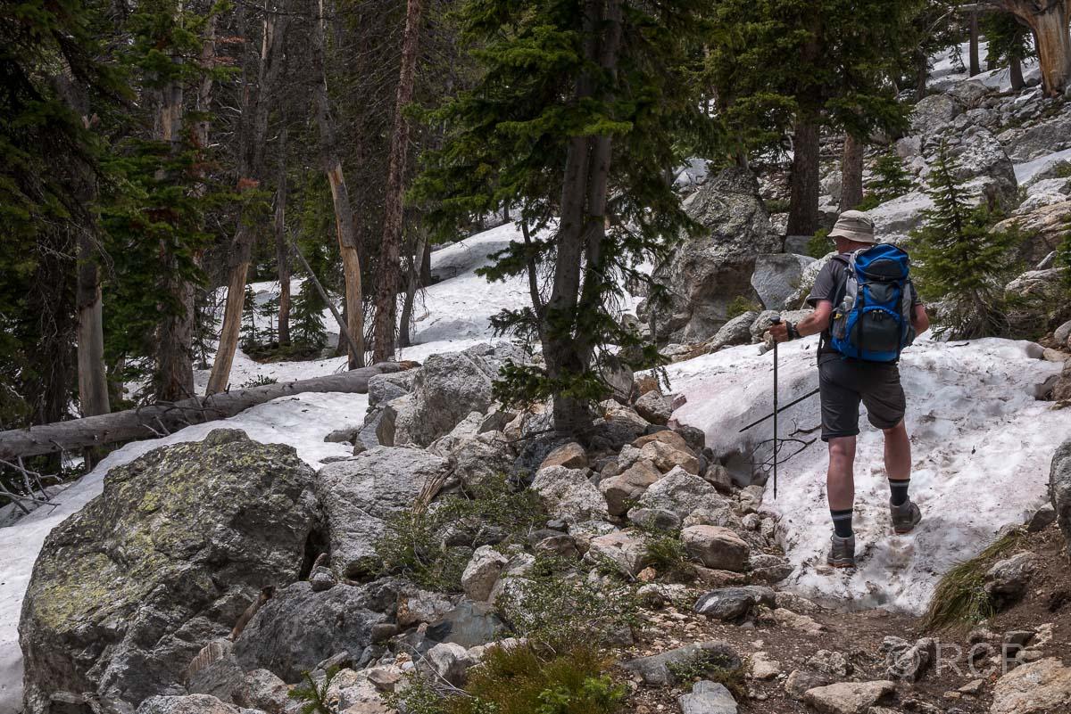 Mann betrachtet Murmeltier am Amphitheater Lake Trail, Grand Teton NP