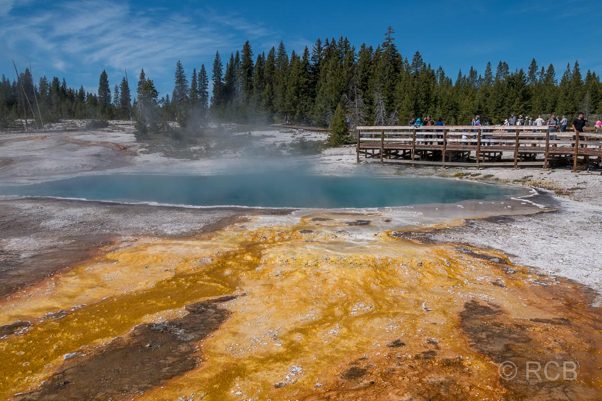 West Thumb Basin: Black Pool, Yellowstone NP