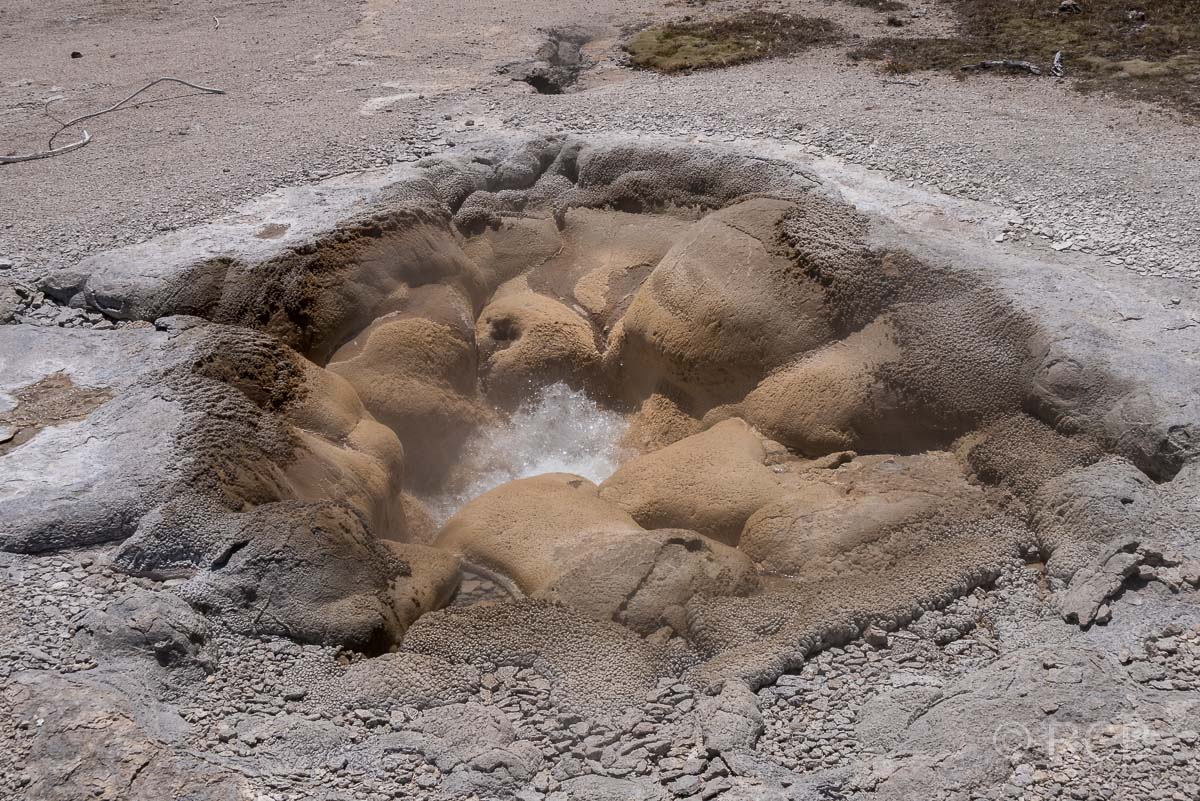 Bisquit Basin: Shell Spring, Yellowstone NP