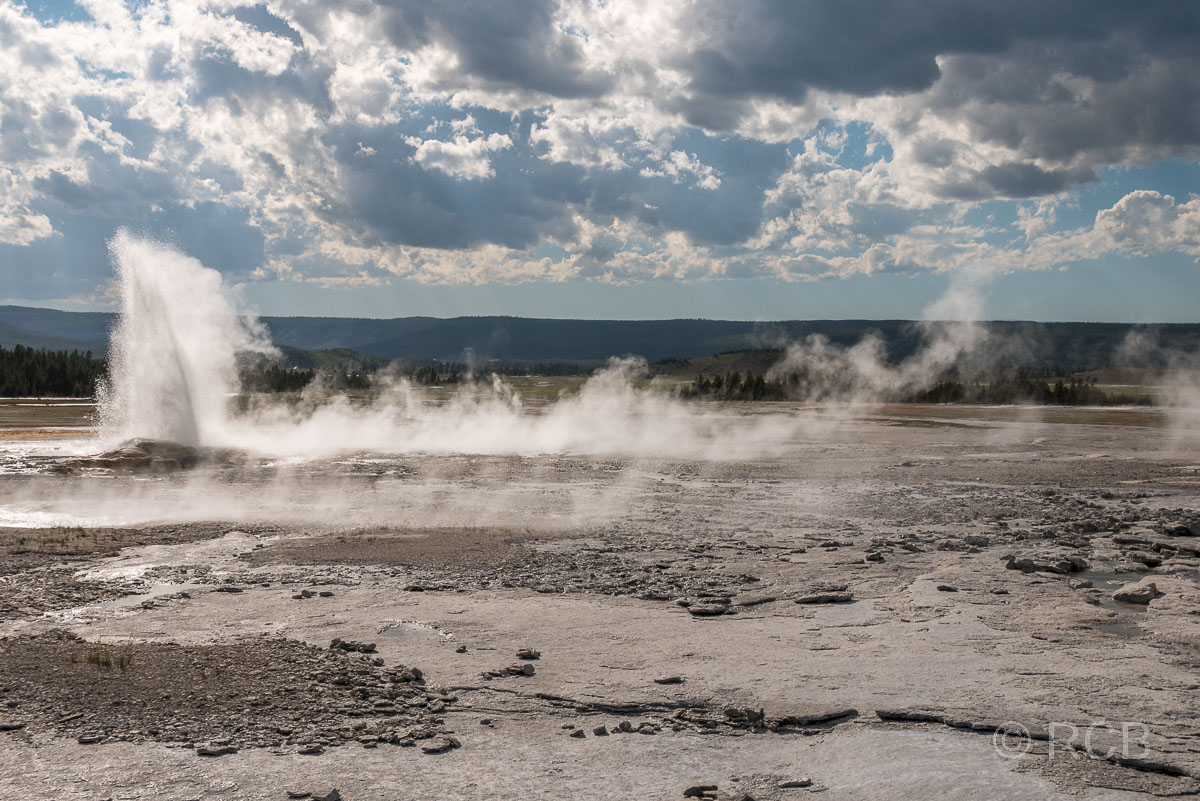 Lower Geyser Basin: Clepsydra Geyser, Yellowstone NP