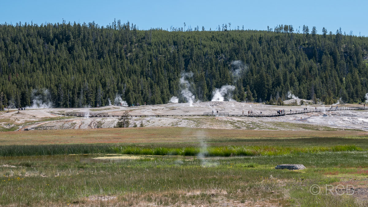 Upper Geyser Basin: Geyser Hill, Yellowstone NP