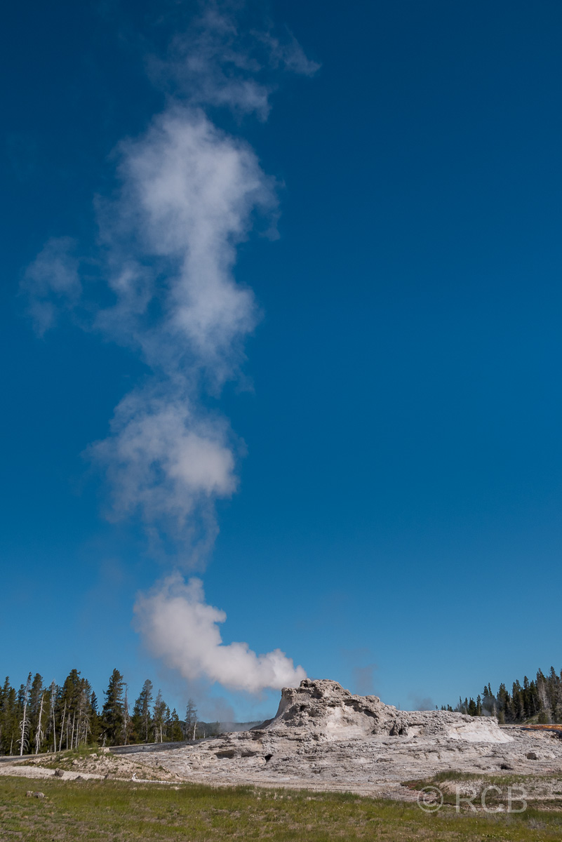 Upper Geyser Basin: Castle Geyser, Yellowstone NP