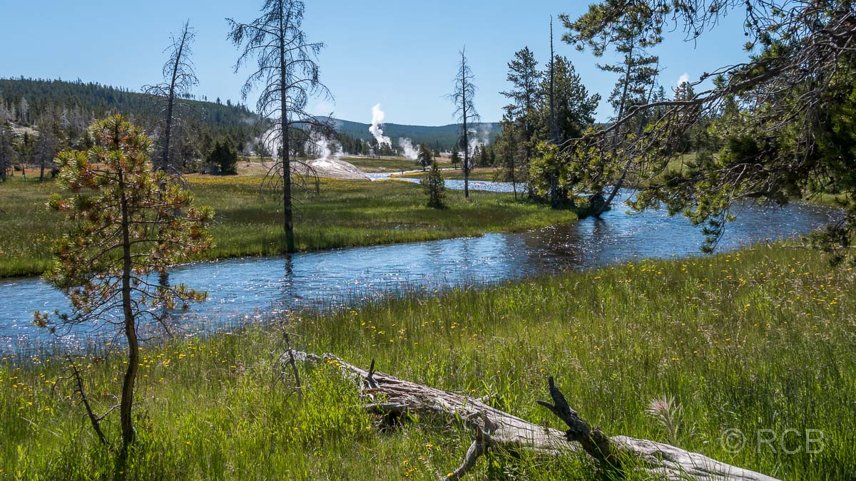 Upper Geyser Basin: Firehole River, Yellowstone NP