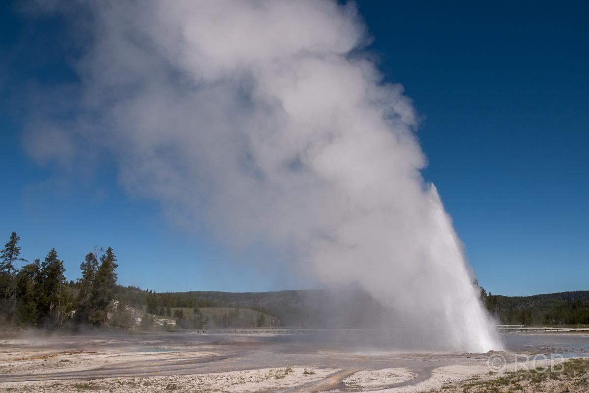 Upper Geyser Basin: Daisy Geyser, Yellowstone NP