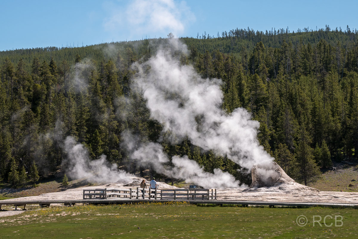 Upper Geyser Basin: Giant Geyser, Yellowstone NP