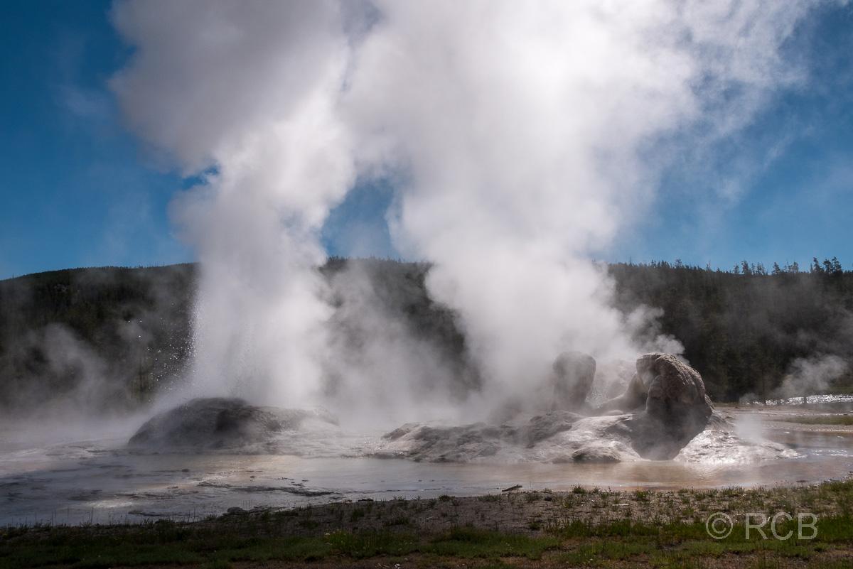 Upper Geyser Basin: Rocket Geyser und Grotto Geyser, Yellowstone NP