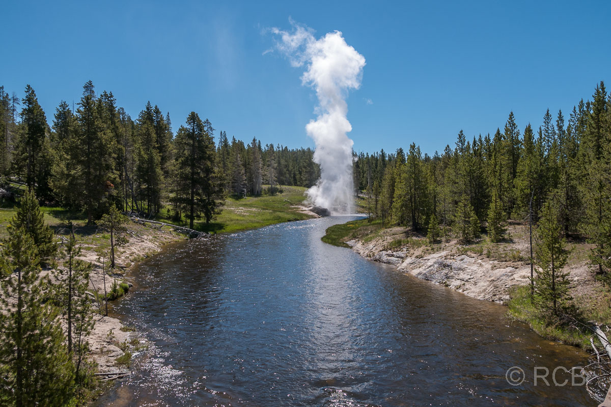 Upper Geyser Basin: Riverside Geyser, Yellowstone NP