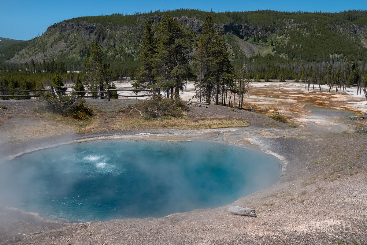 Black Sand Basin: Black Sand Pool, Yellowstone NP
