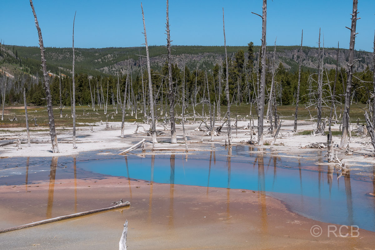 Black Sand Basin: Opalescent Pool, Yellowstone NP