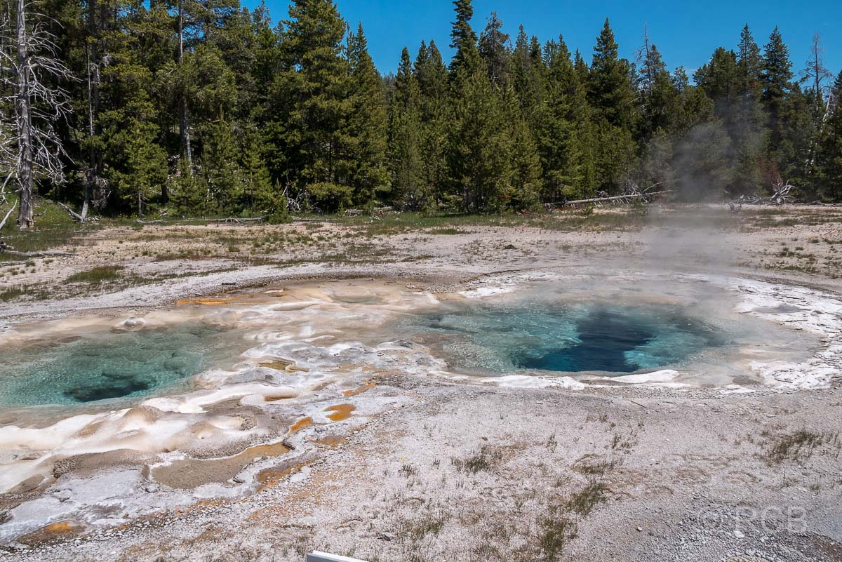 Upper Geyser Basin: Spasmodic Geyser, Yellowstone NP