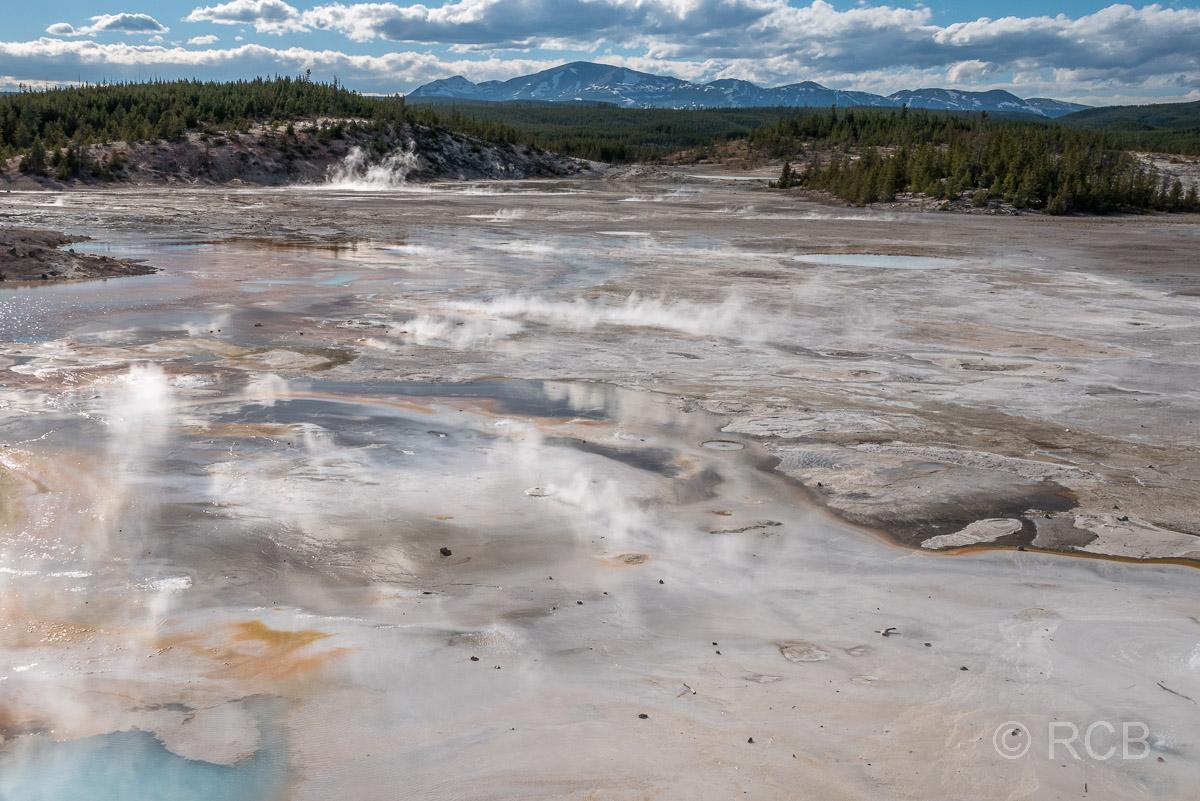 Norris Geyser Basin: Porcelain Basin, Yellowstone NP