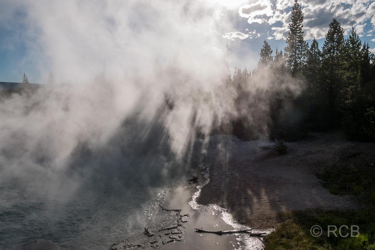 Norris Geyser Basin: Emerald Spring, Yellowstone NP