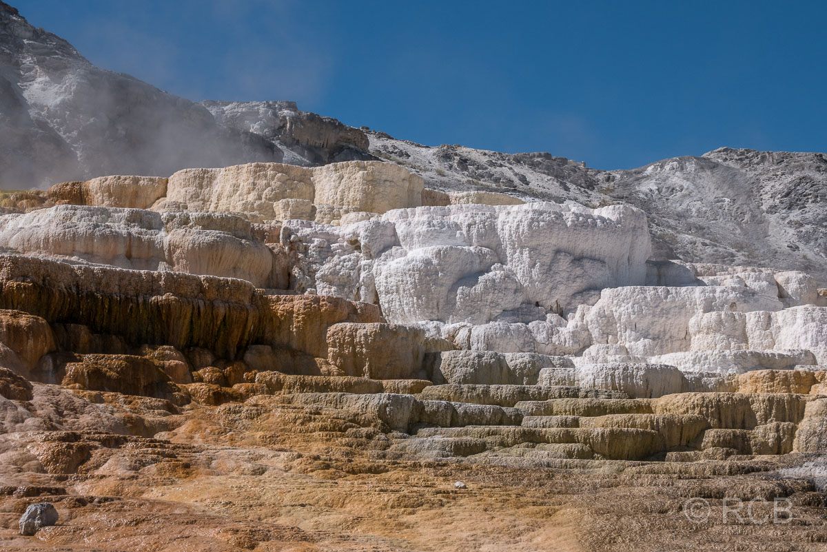 Mammoth Lower Terraces: Mound Terrace, Yellowstone NP
