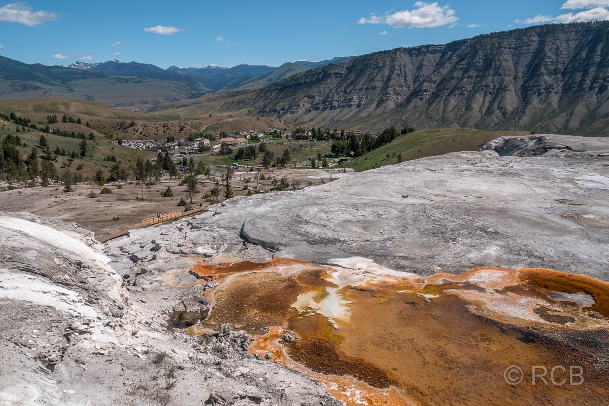 Mammoth Upper Terraces: Main Terrace, Yellowstone NP