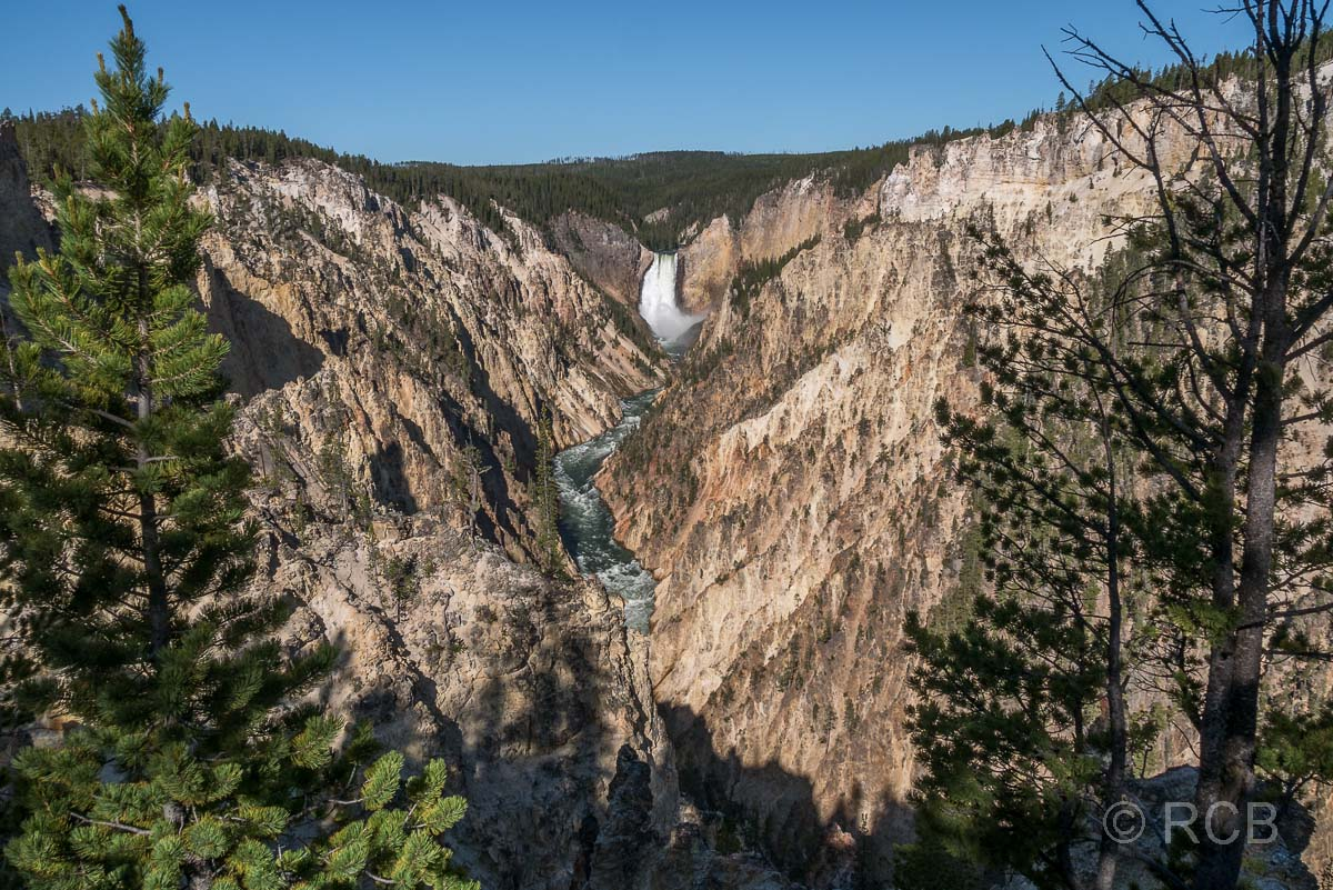 Grand Canyon of the Yellowstone mit den Lower Falls