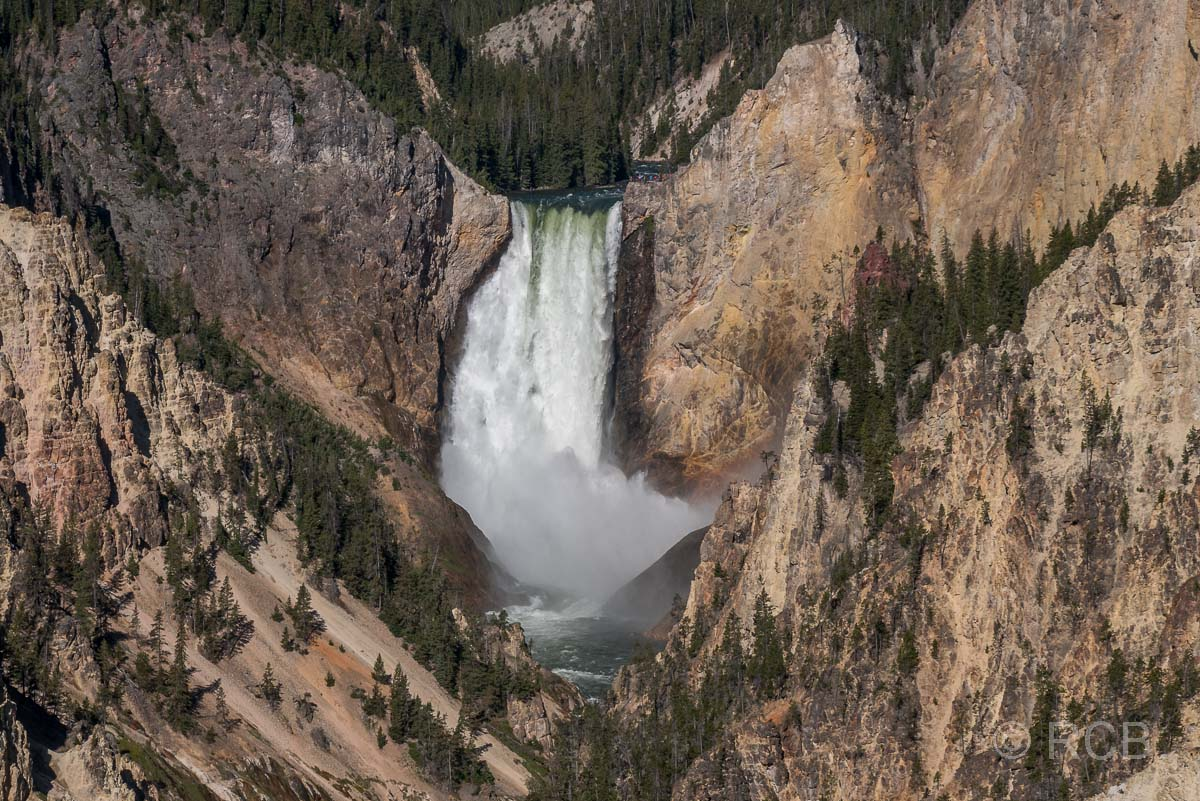 Lower Falls, Yellowstone NP