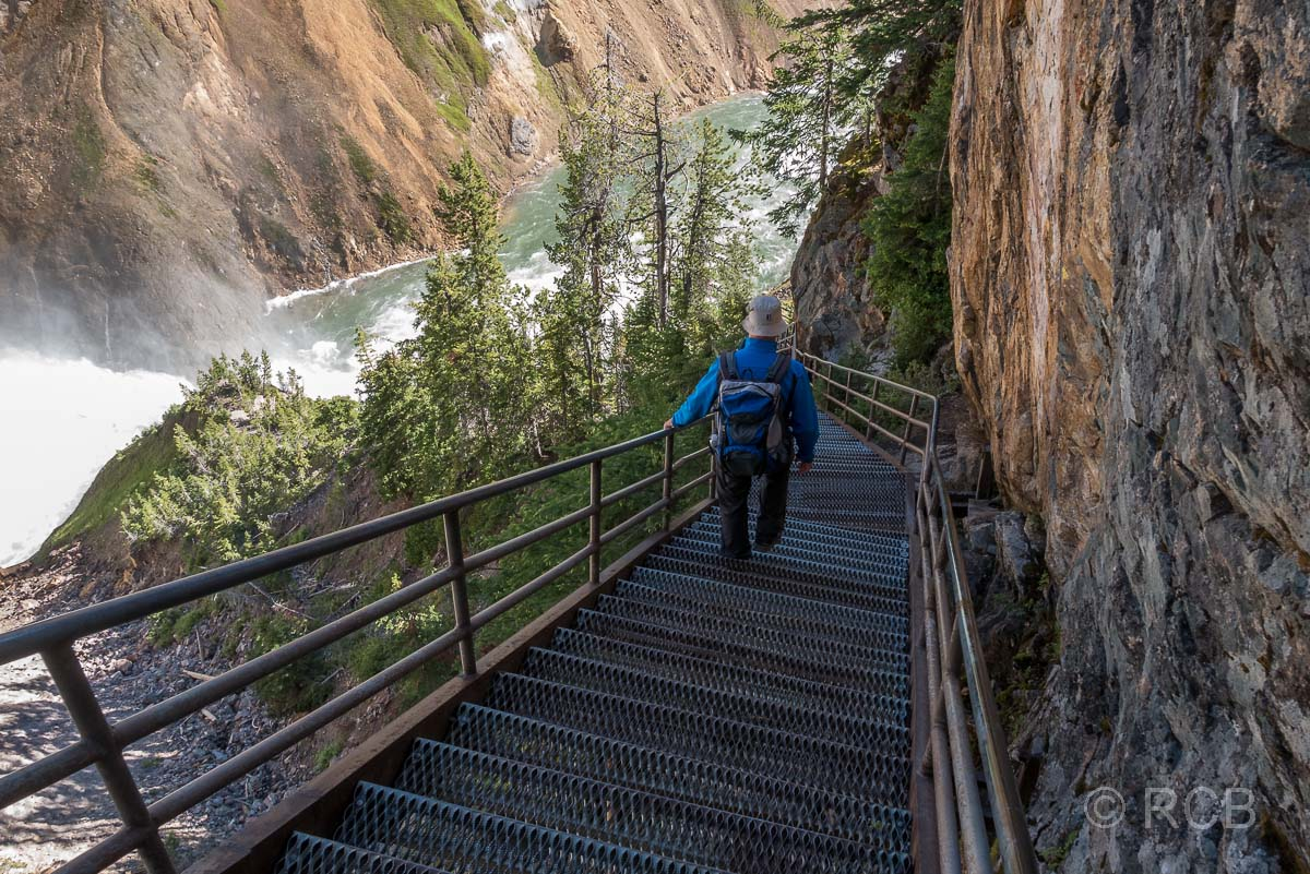 Abstieg zu Uncle Tom's Point, Grand Canyon of the Yellowstone