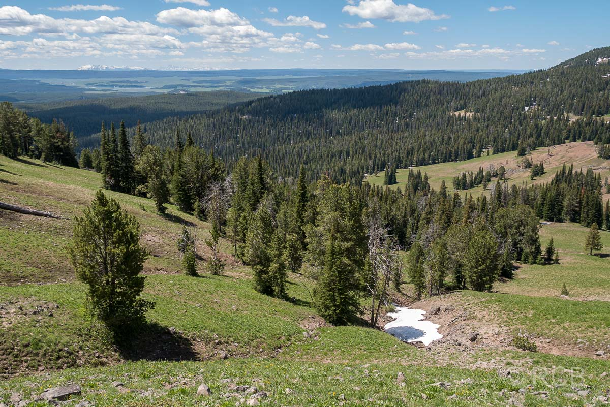 Mount Washburn Trail, Blick nach Süden, Yellowstone NP