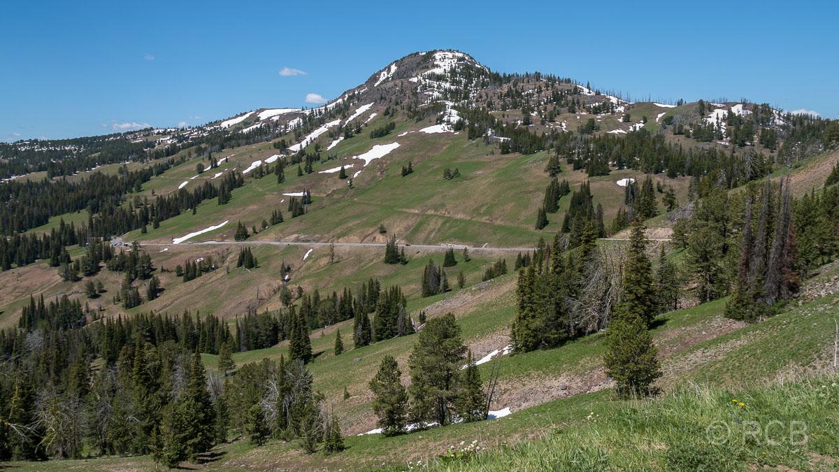 Mount Washburn Trail, Blick zur Grand Loop Road, Yellowstone NP