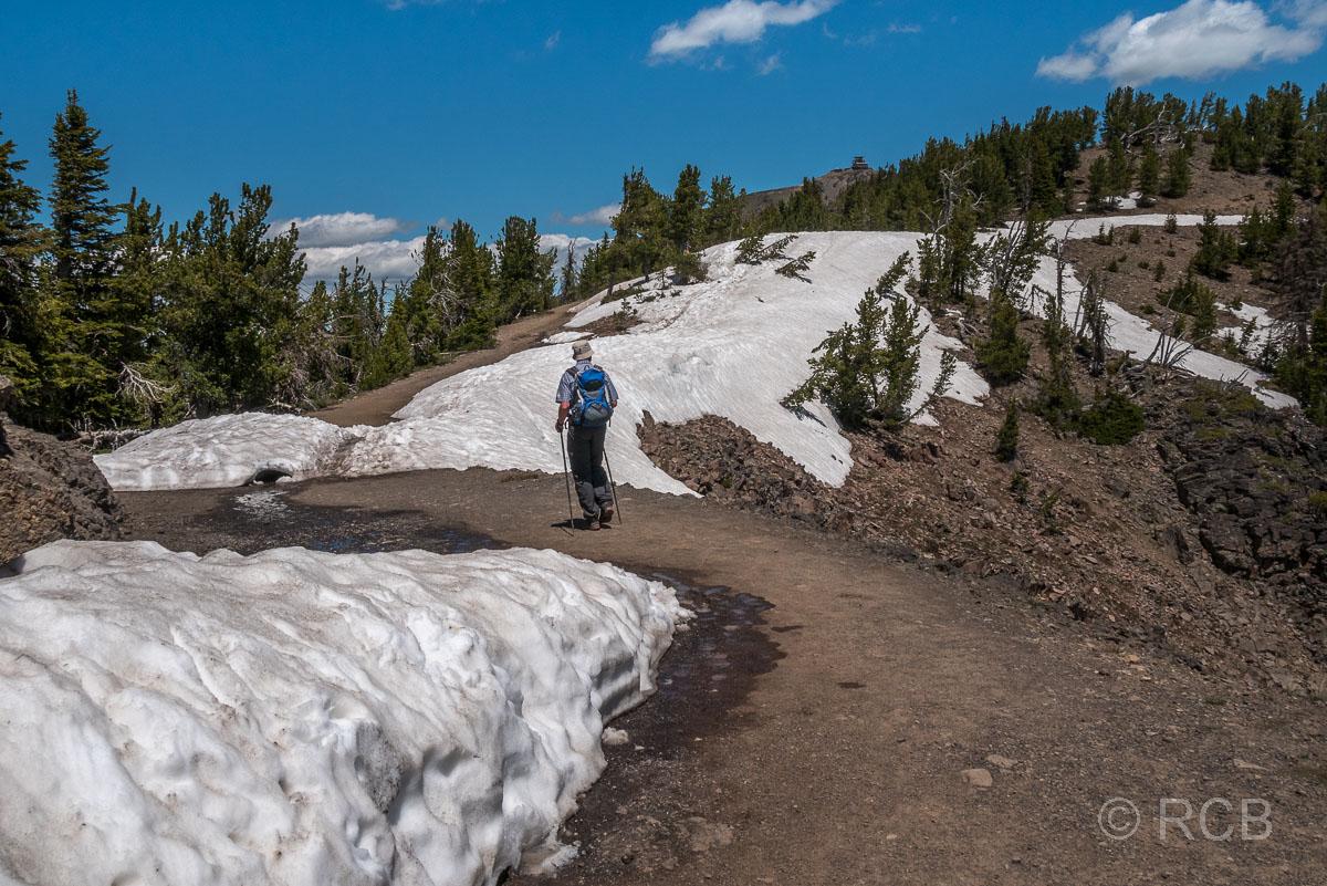 Mount Washburn Trail, Yellowstone NP