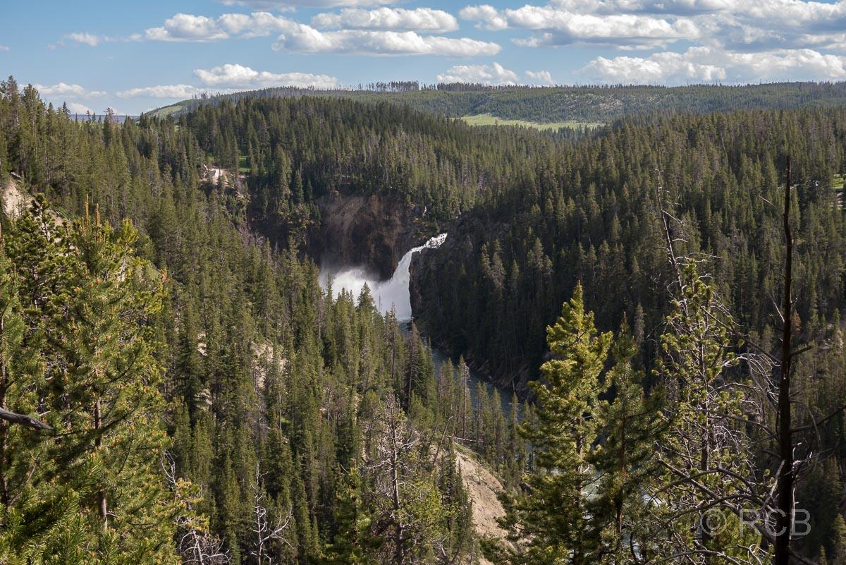 Blick zu den Upper Falls, Yellowstone NP