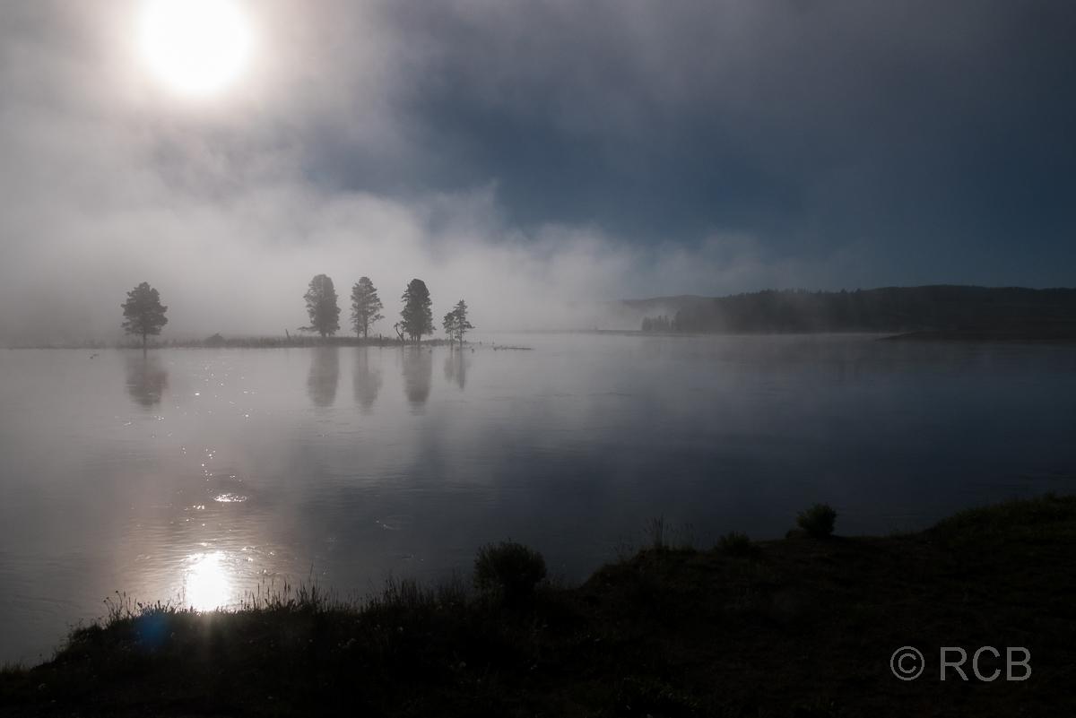 neblige Morgenstimmung am Yellowstone River, Yellowstone NP