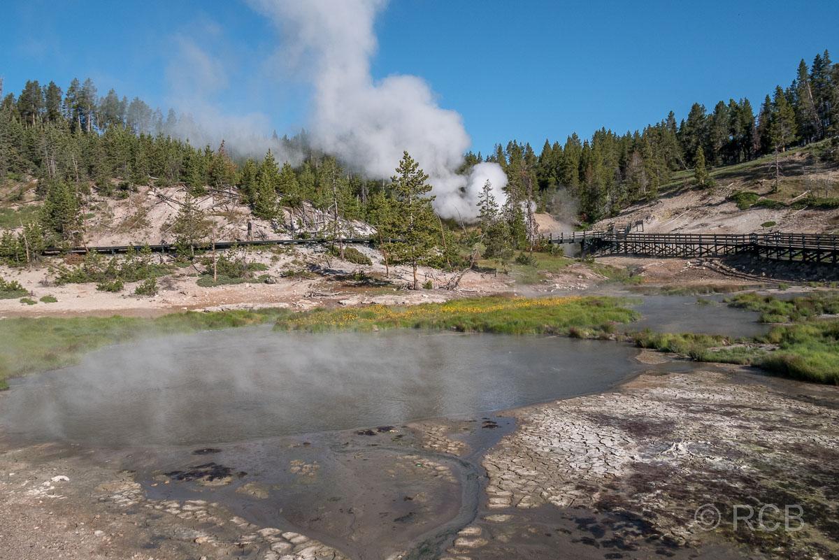 Mud Volcano Area, Yellowstone NP