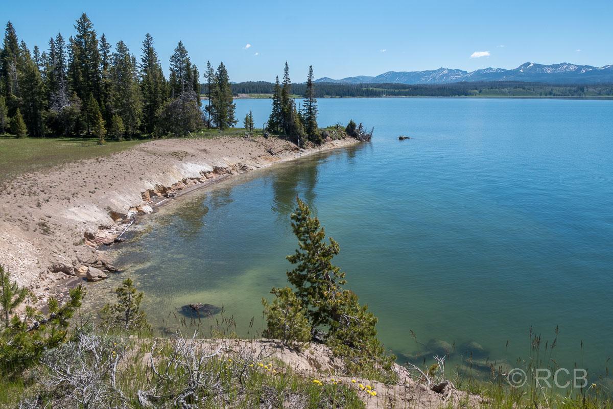 am Ufer des Yellowstone Lake, Yellowstone NP