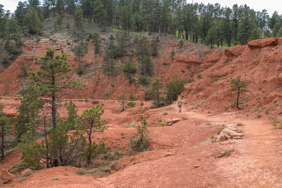 Red Beds Trail, Devils Tower NM