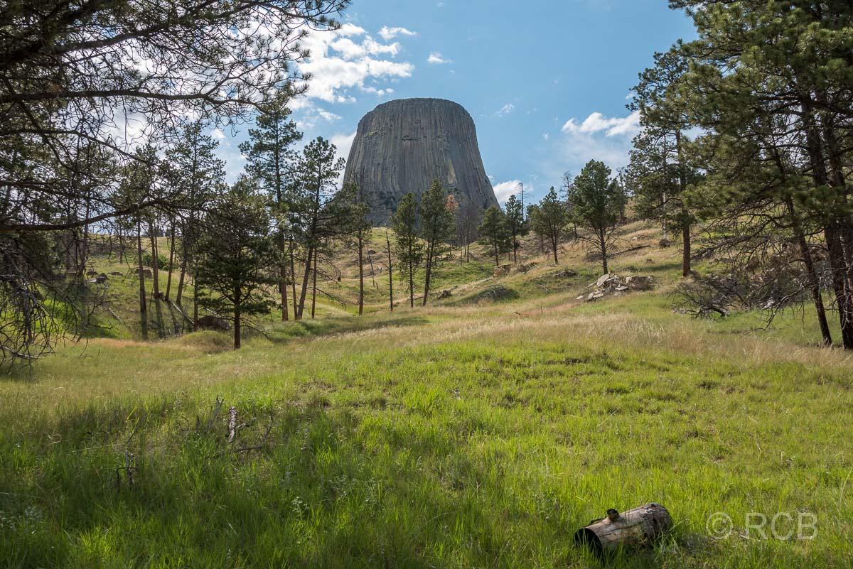 Devils Tower NM vom Red Beds Trail aus