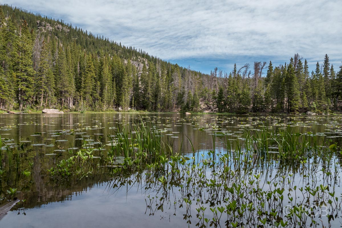 Nymph Lake, Rocky Mountain NP