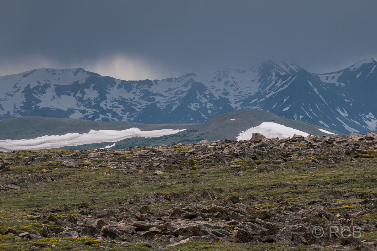 Ausblick vom Tundra Communities Trail, Rocky Mountain NP